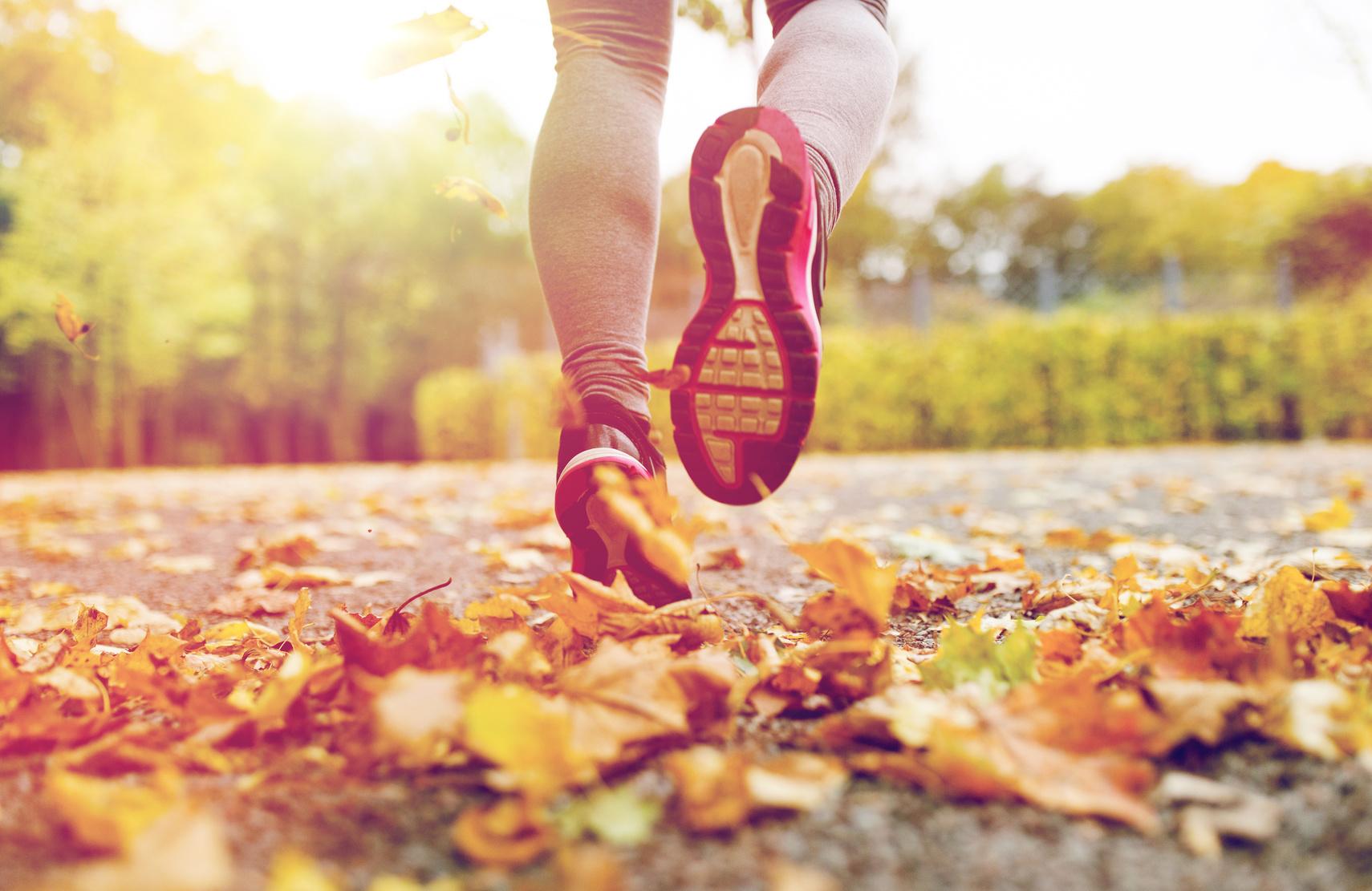 Sporty idealne na jesienną porę
